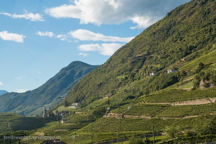 Kaltern auf dem Ritten Weinberge Südtirol Italien
