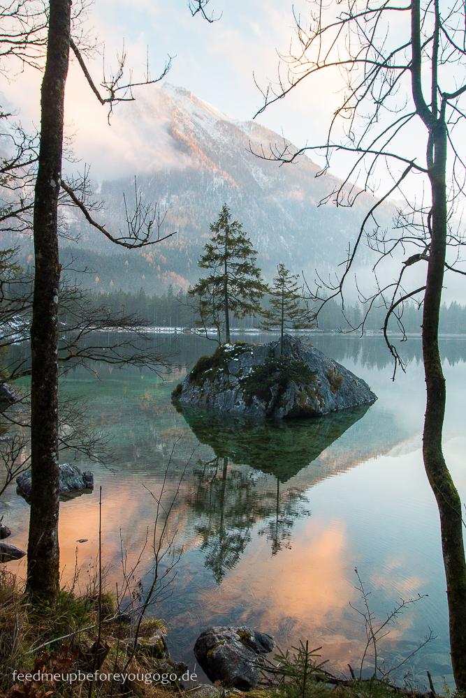 Zauberwald am Hintersee im Sonnenuntergang Ramsau Winter im Berchtesgadener Land