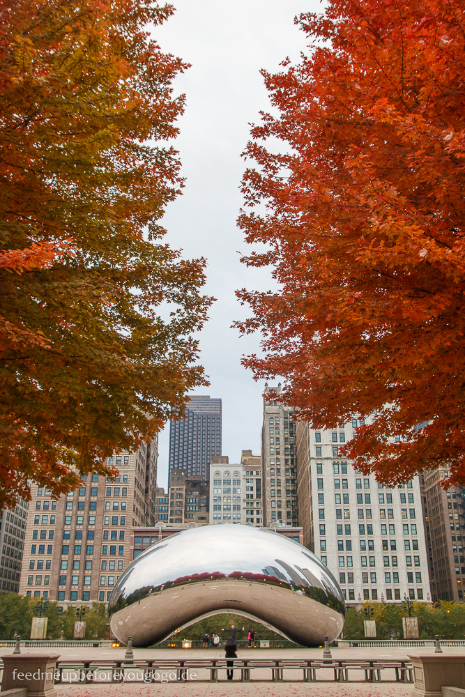 Cloud Gate The Bean Chicago Millennium Park The Loop