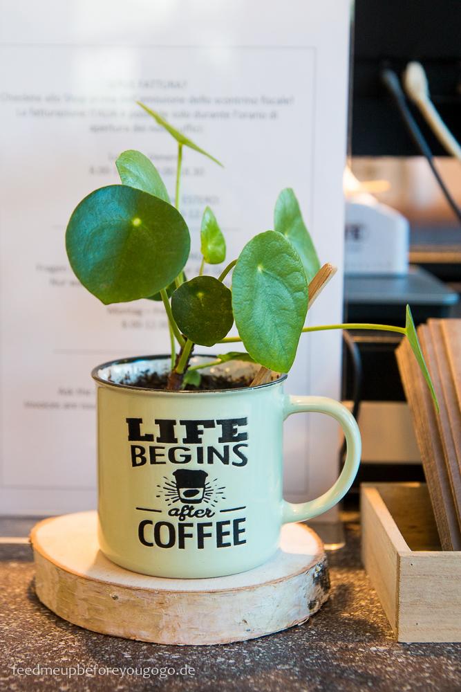 Tipps für den Gardasees: Arco Omkafe Kaffeerösterei