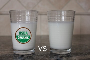understanding the differences between organic and conventional milk