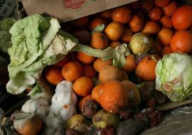Tesco Recycled Feed the Need Bahrain