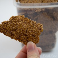 How to Soak Flax Seed for Dehydrated Crackers