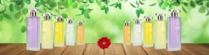 Illustration des parfum fabiani avec un decor printanier