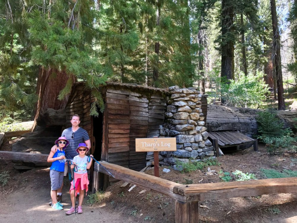 Sequoia national park is a journey for the heart and soul for Log cabin sequoia national park