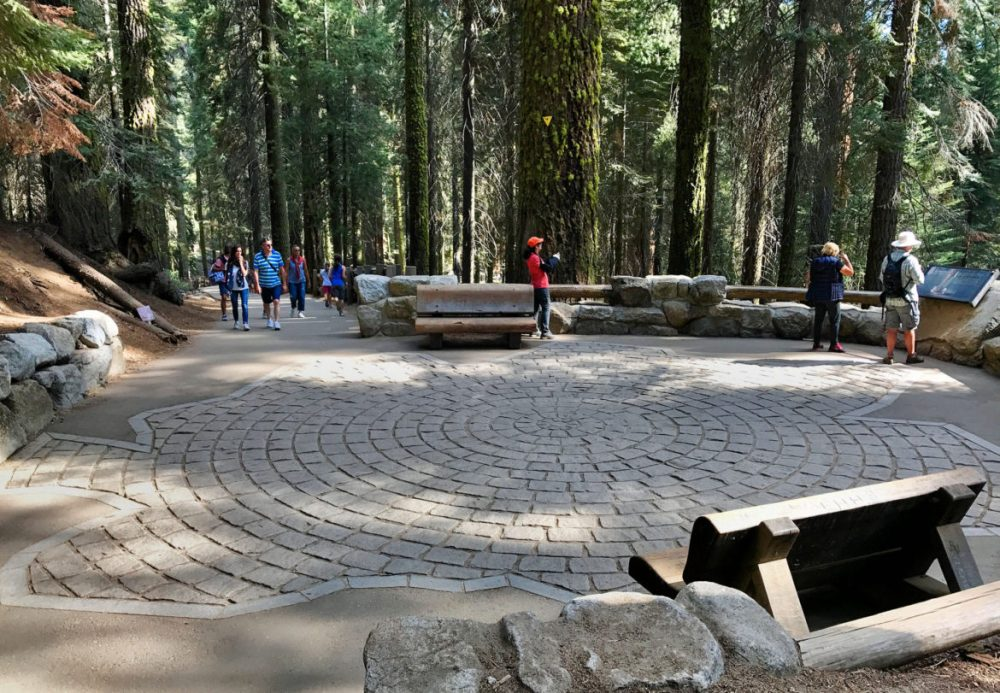 The footprint of General Sherman