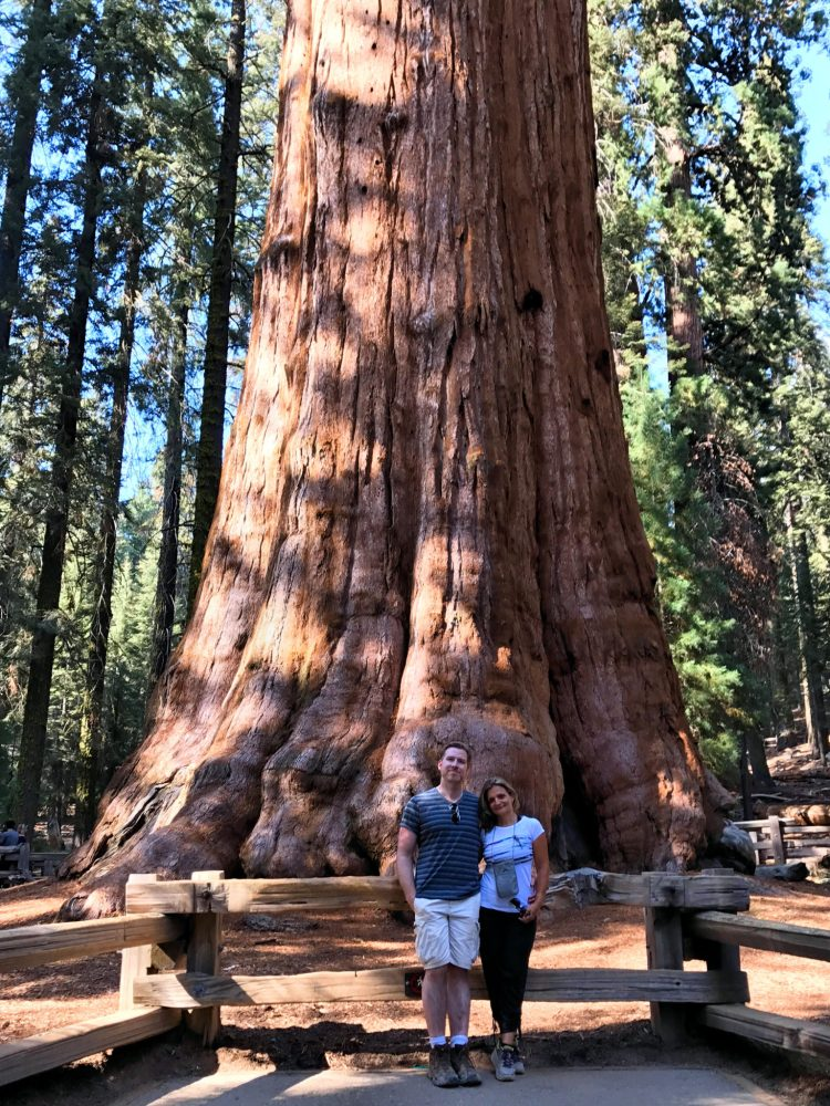 With General Sherman, the largest tree in the world by volume