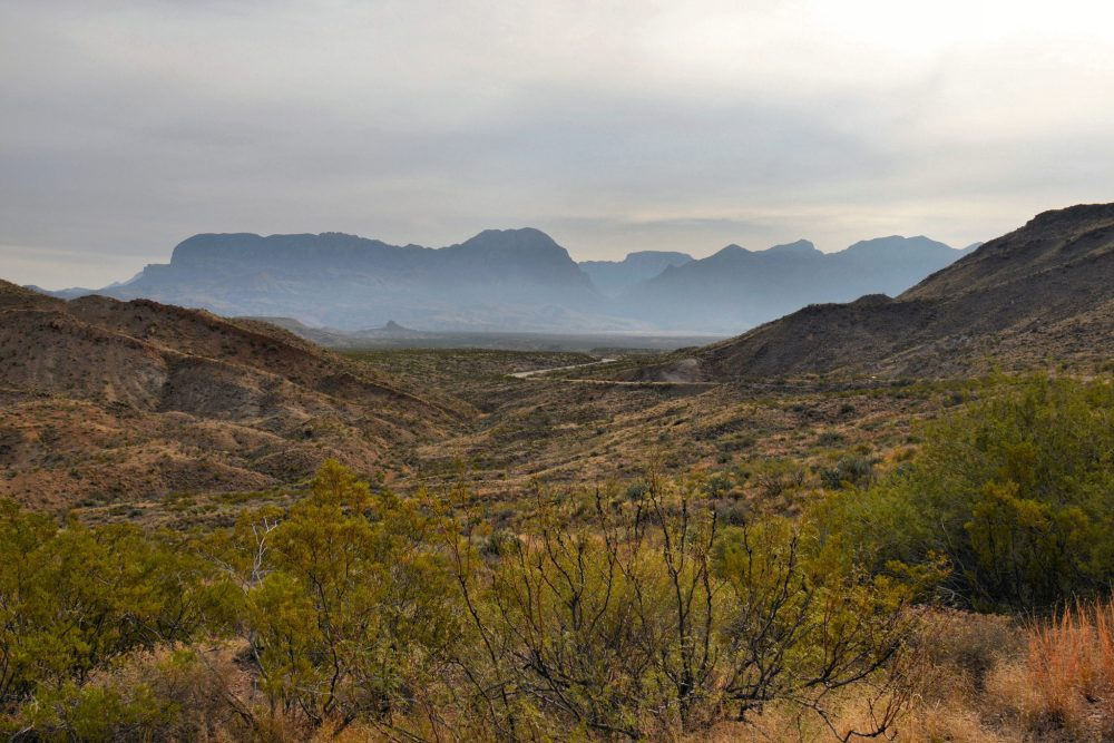Road near the west entrance to Big Bend National Park