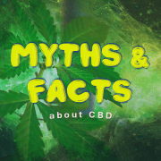 cbd-myths-and-facts