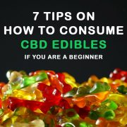 CBD edibles in the form of gummy bears