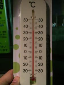 2016年夏沖縄 気温