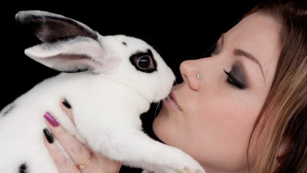 EU bans animal testing