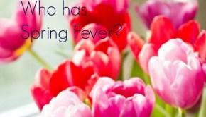 TulipsSpringFever
