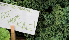 My Month Without Eating Kale