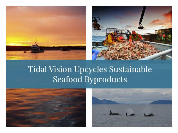 Tidal Vision Upcycles Sustainable Seafood Byproducts Into Clothing, Accessories