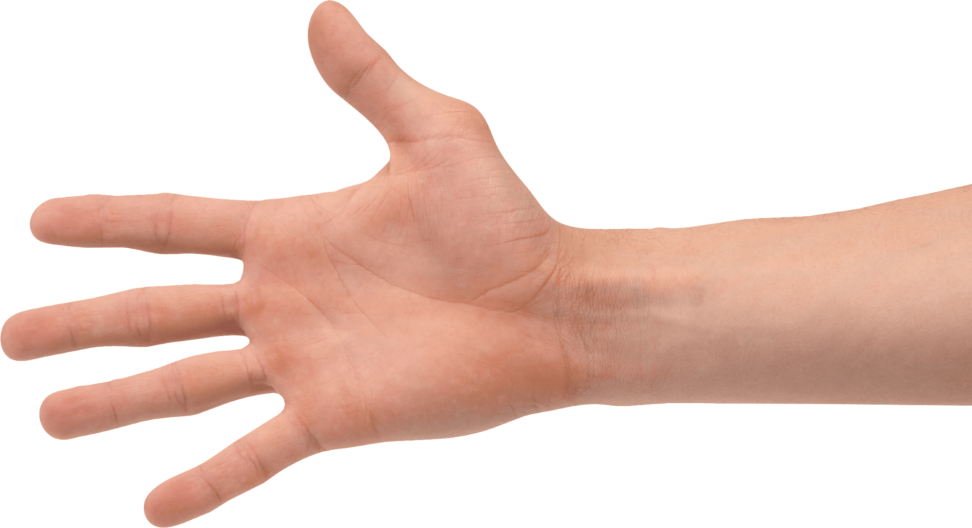 Strain Care: 3 Stretches for Your Wrists - Whole Health Boston