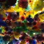 Las Vegas: Bellagio glass flowers