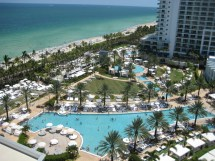 Feel Miami