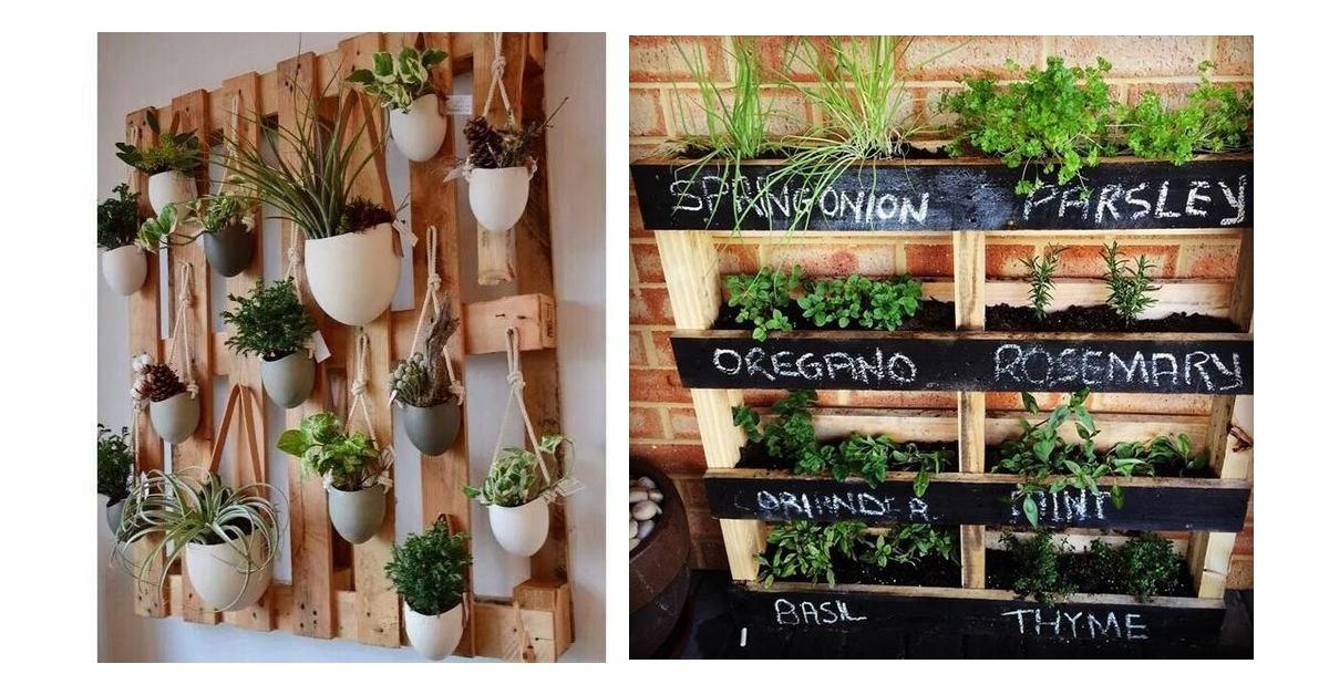 Verticaal tuinieren met deze 6 tips creer je een