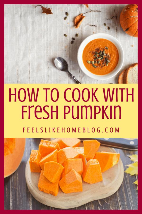 pumpkin soup and cut up pumpkin