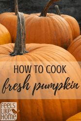 How to cook with fresh pumpkin - It's simple and easy to use fresh pumpkins to make puree. You can freeze it to save it for later use in recipes like pie, bread, and cookies. What to do with a fresh pumpkin to make a healthy meal. Great for fall and especially Thanksgiving.