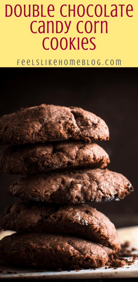 a stack of double chocolate cookies