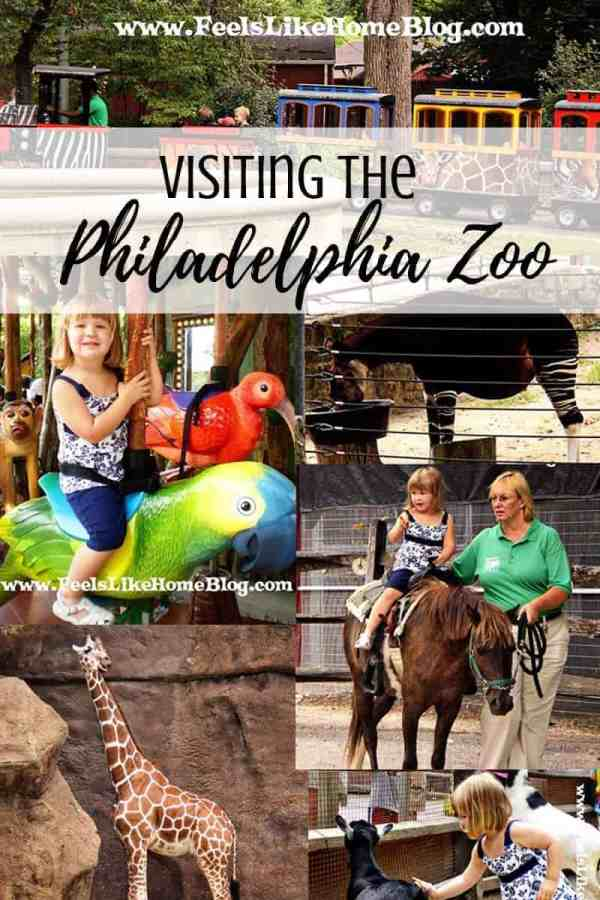 A collage of Philadelphia zoo pictures