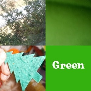 Photos of green items