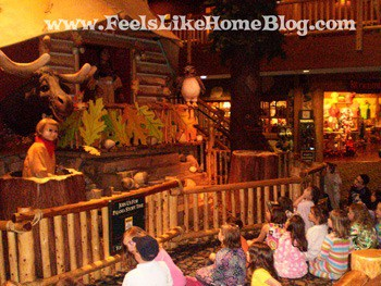 Great Wolf Lodge story time