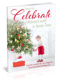 The cover of a book about using a Jesse Tree during Advent