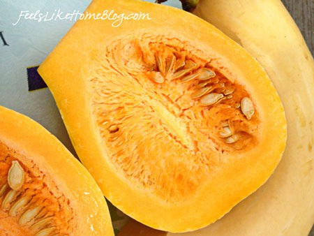 Neck Pumpkin - Kindergarten Science
