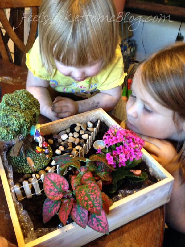 Two little girls looking at their finished fairy garden