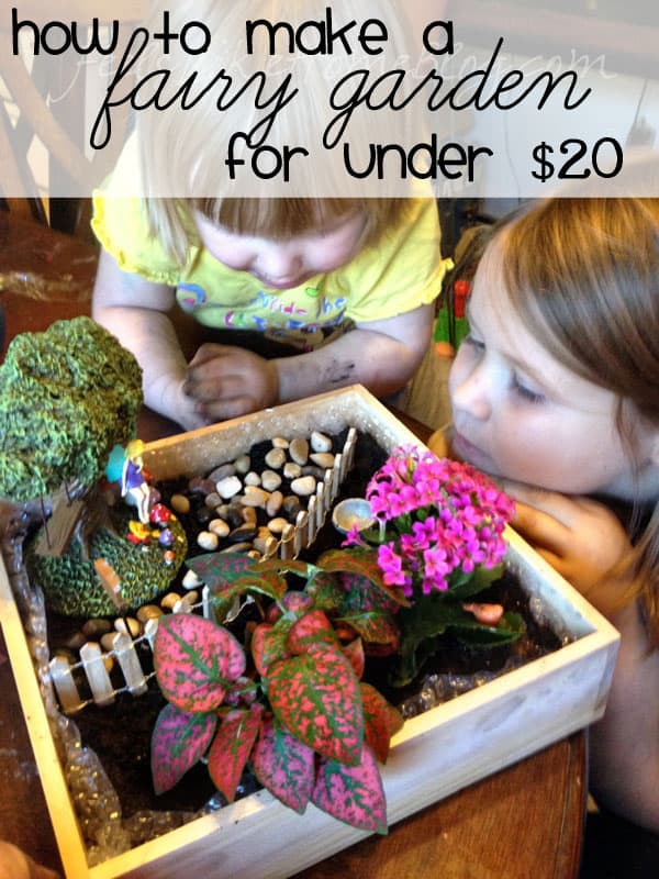 How to Make a DIY Fairy Garden for Under $20 - This cheap project includes ideas and a tutorial for kids to make their own fairy garden with real, live plants, accessories and furniture. Lots of fun to put together with children.