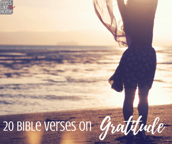 Bible Verses on gratitude & being thankful - These 20 scriptures will encourage you to be grateful in every circumstance. The words of the Lord Jesus Christ and others will inspire you to walk in life, truth, and faith with a grateful heart.