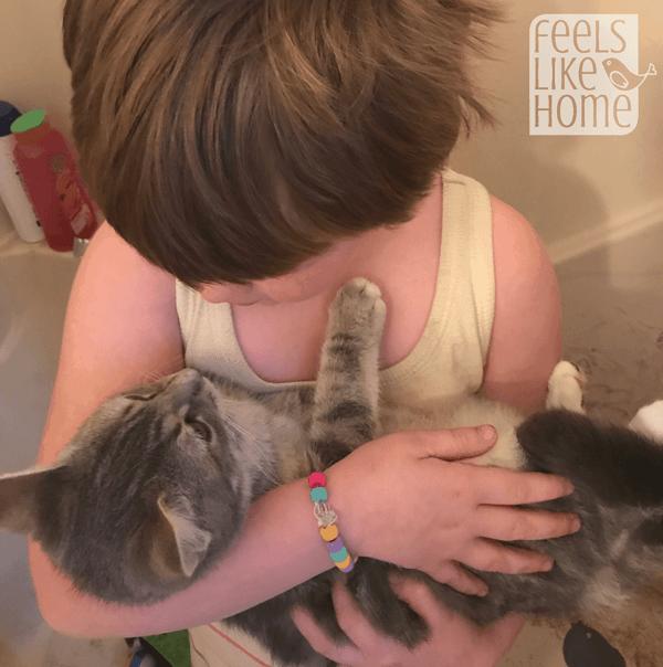 A little girl holding a kitten