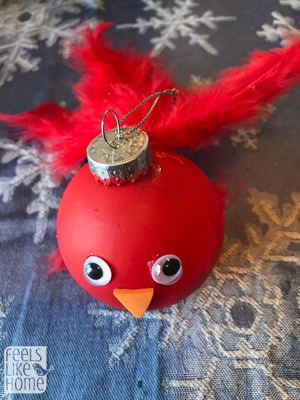 A close up of the red bird with feathers for a tail