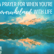 A Prayer for When You're Anxious and Overwhelmed with Life