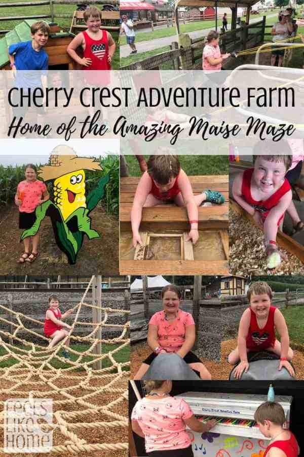 A collage from Cherry Crest Adventure Farm
