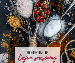 The best homemade spicy or mild Cajun seasoning recipe - Simple & easy spice mixes. Great for chicken, shrimp, pork, beef, or almost any meat.