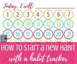 This free daily habit tracker printable can be used weekly or monthly for 30 or 60 days. I made mine fun by putting stickers on the numbers instead of crossing them off. Simple and easy to use in your planner or bullet journal. Blank minimalist vertical template for any habit. Great PDF ideas for kids to track healthy habits like personal fitness.