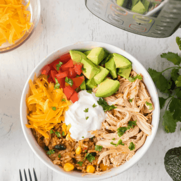 cropped-Instant-Pot-chicken-burrito-taco-bowls-12.png