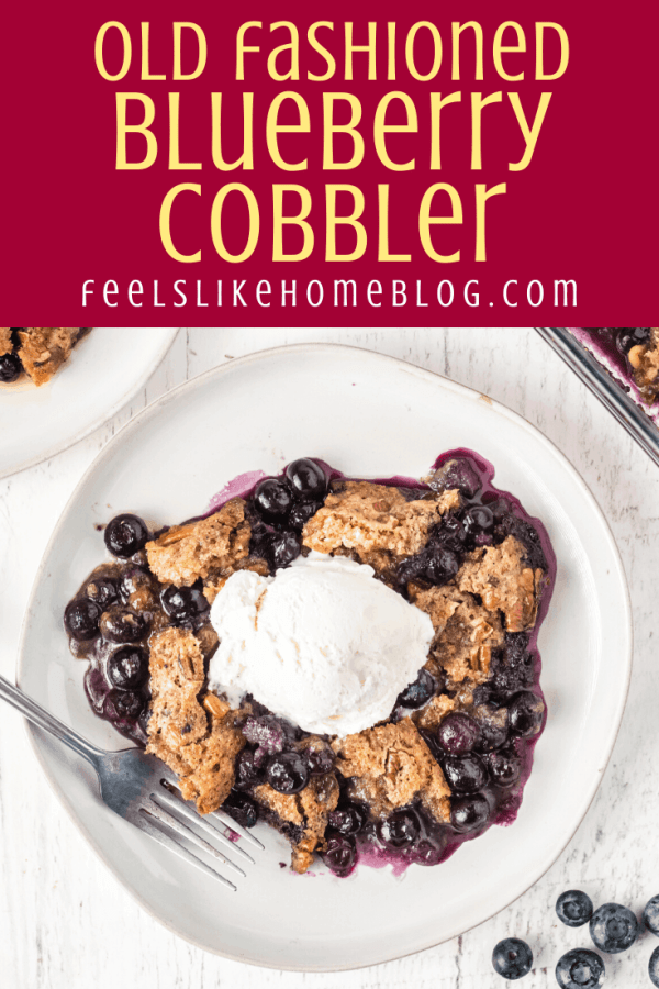 one slice of old fashioned blueberry cobbler topped with ice cream