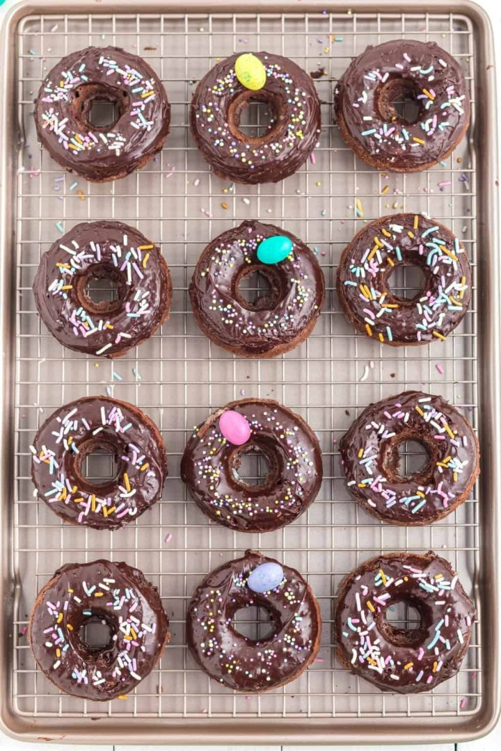 double chocolate donuts with sprinkles