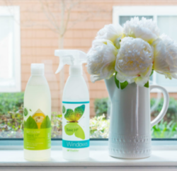 Green Cleaners … do they really clean?