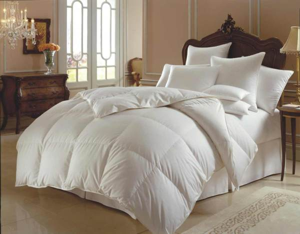Bed Comforters And Bedspreads Teen