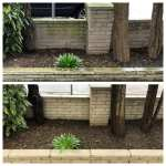 Residential Brick Cleaning