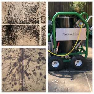 patio black spots and the machine that gets rid of them, the Therma-Tech super heated steam cleaner
