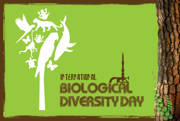 UAE Celebrates World Biodiversity Day