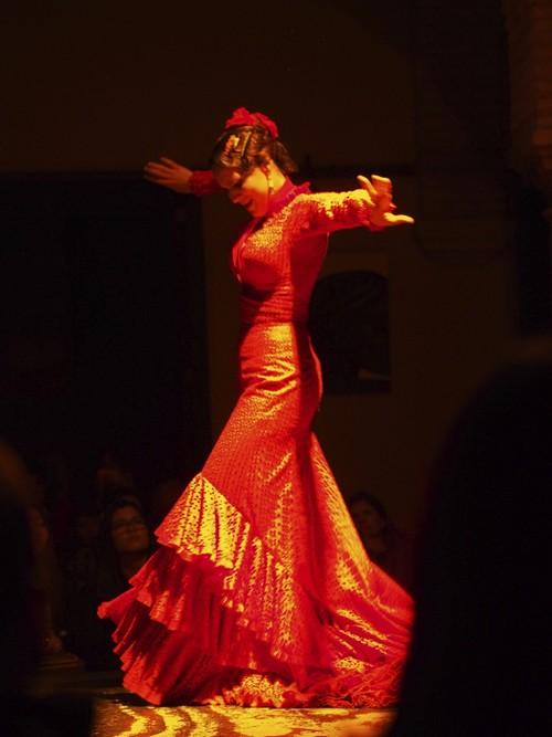 Le Journal D'une Maman : journal, d'une, maman, Spectacle, Flamenco, Sville, [Sville