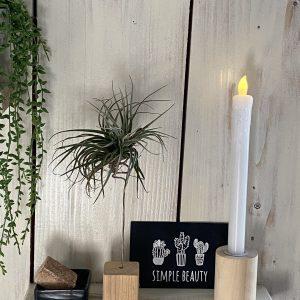 houten decoratie luchtplantjes